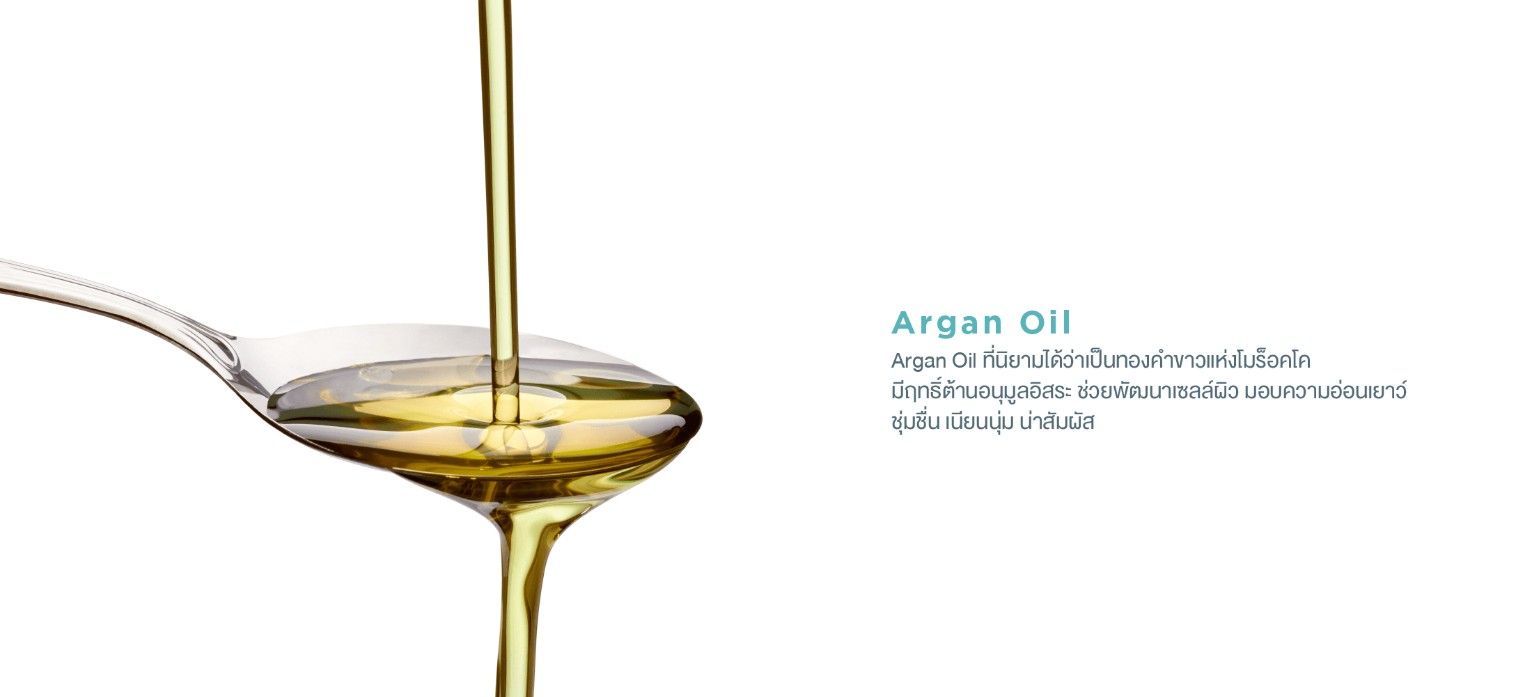 TH-cleansing-oil-banner-03